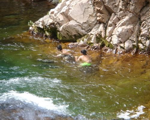 敷地内の小川や、町の川で遊ぼう♪綺麗な清流です。