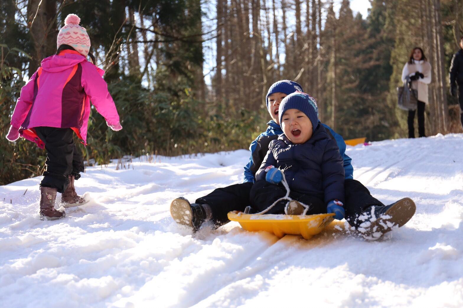 雪遊び、ソリ遊び、キッズプラン