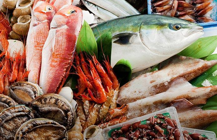 市場へ直接買い付の鮮魚 イメージ