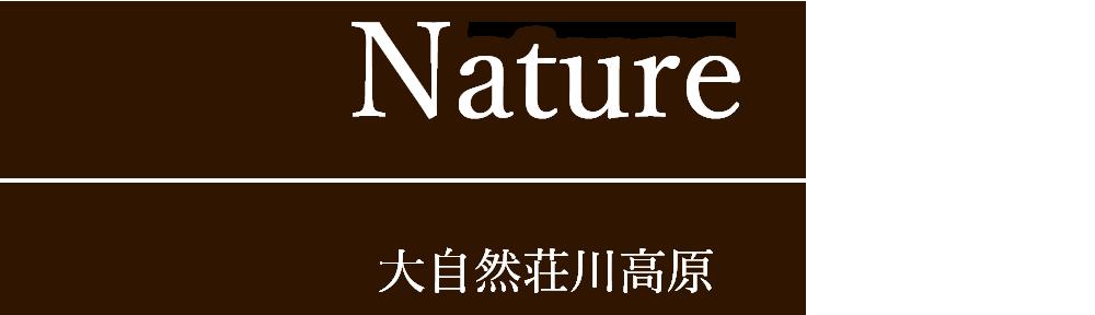 大自然荘川高原