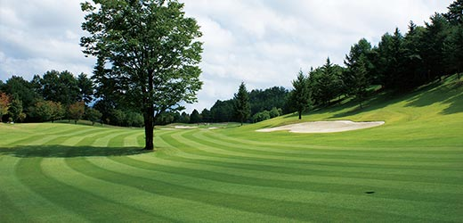 ゴルフ イメージ