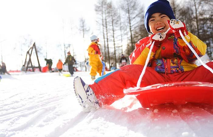 荘川高原スキー場 イメージ